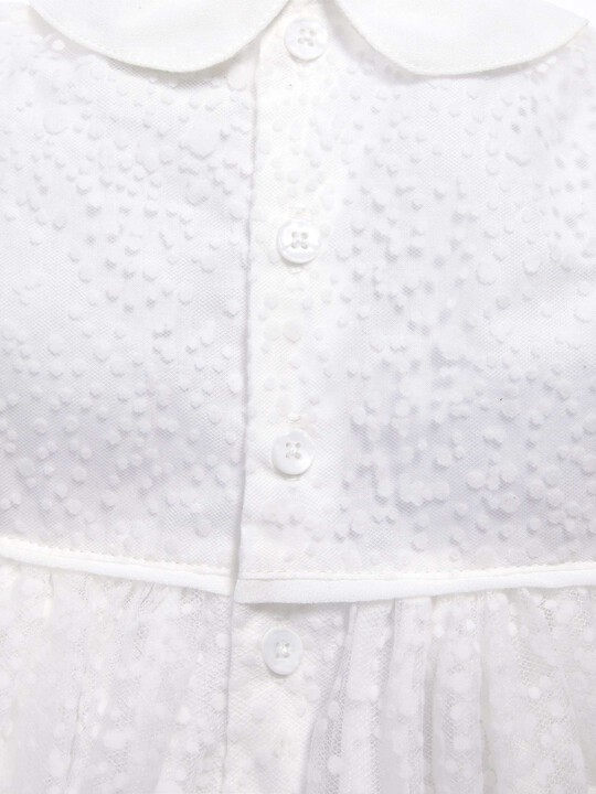 Flocked Spot Fabric Collared Dress image number 4