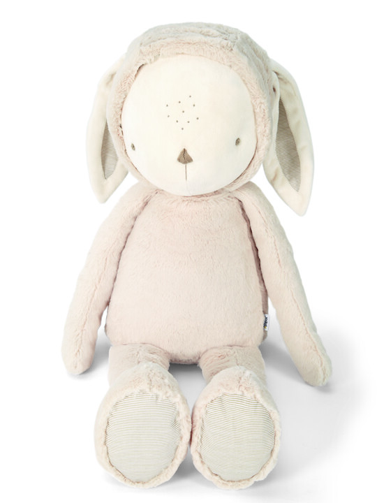 My First Bunny - Huge image number 1