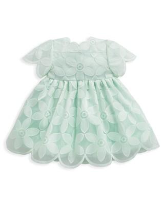 Mint Organza Dress