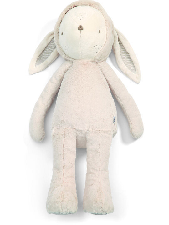 My First Bunny - Huge image number 2