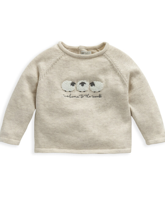 Knitted Sheep Jumper image number 1